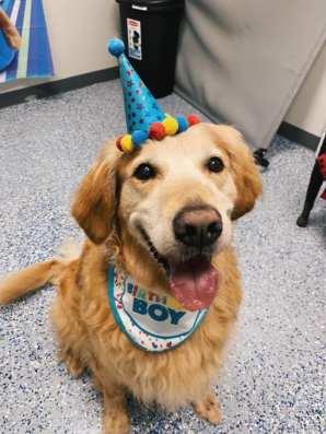 buddy birthday